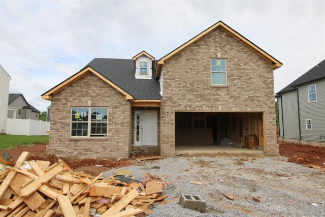 202 The Groves At Hearthstone, Clarksville, TN 37040 (MLS #2024751) :: The Helton Real Estate Group