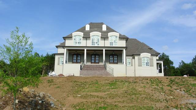 9246 Lehigh Drive (Lot #44), Brentwood, TN 37027 (MLS #RTC2120704) :: Nashville on the Move