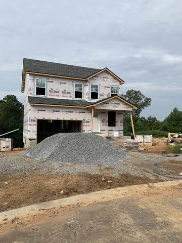 24 Warrioto Hills, Clarksville, TN 37040 (MLS #RTC2176692) :: Village Real Estate