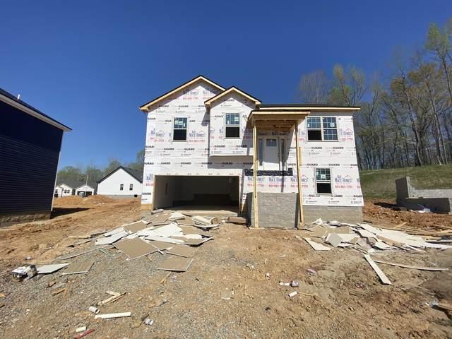 26 Woodland Hills, Clarksville, TN 37043 (MLS #RTC2231144) :: Christian Black Team