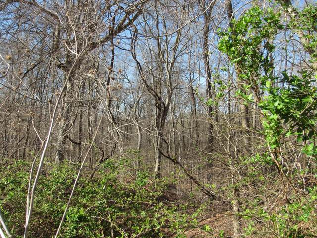 0 Reed Rd, Indian Mound, TN 37079 (MLS #RTC2239876) :: Your Perfect Property Team powered by Clarksville.com Realty