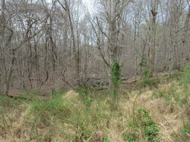 0 Reed Rd, Indian Mound, TN 37079 (MLS #RTC2239877) :: Your Perfect Property Team powered by Clarksville.com Realty