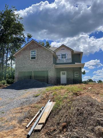 396 Kristie Michelle Ln, Clarksville, TN 37042 (MLS #RTC2255345) :: Morrell Property Collective | Compass RE