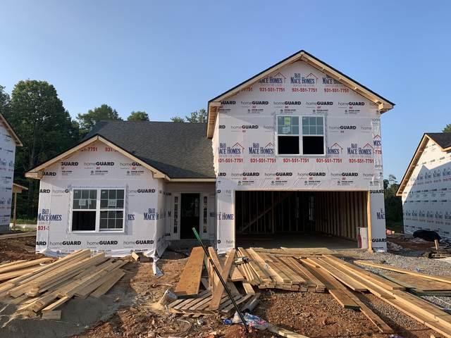 222 Cedar Springs 3, Clarksville, TN 37042 (MLS #RTC2284731) :: EXIT Realty Lake Country