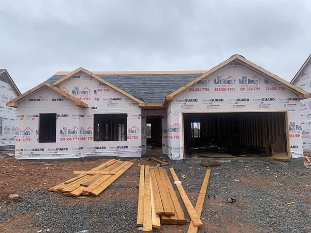 107 Irish Hills, Clarksville, TN 37042 (MLS #RTC2291846) :: The Milam Group at Fridrich & Clark Realty