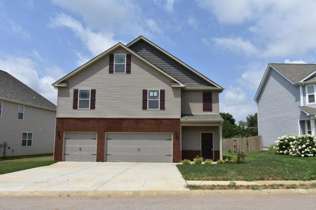493 Reserve At Oakland, Clarksville, TN 37040 (MLS #1916819) :: Ashley Claire Real Estate - Benchmark Realty