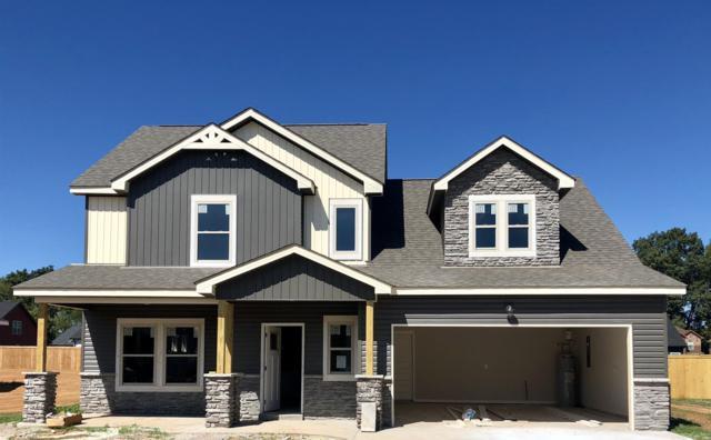 46 Beech Grove, Clarksville, TN 37043 (MLS #1924350) :: DeSelms Real Estate