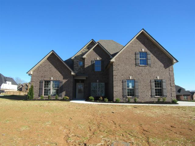 1018 Sycamore Leaf Way, Murfreesboro, TN 37129 (MLS #1937241) :: DeSelms Real Estate