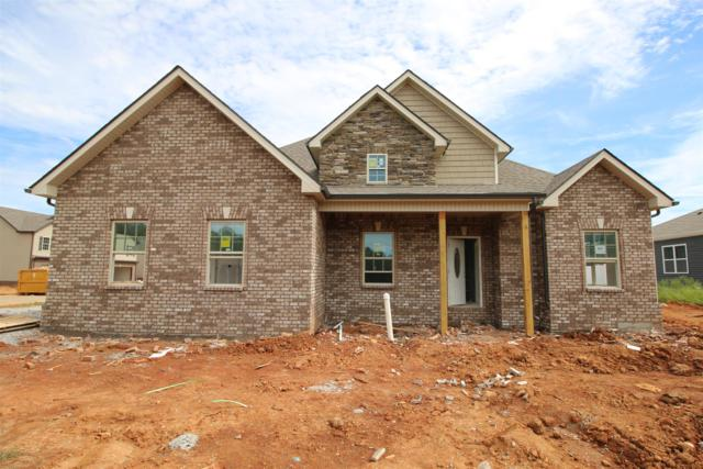 207 The Groves At Hearthstone, Clarksville, TN 37040 (MLS #1960498) :: HALO Realty