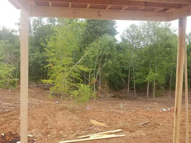 41 Warrioto Hills, Clarksville, TN 37042 (MLS #RTC2147674) :: RE/MAX Homes And Estates