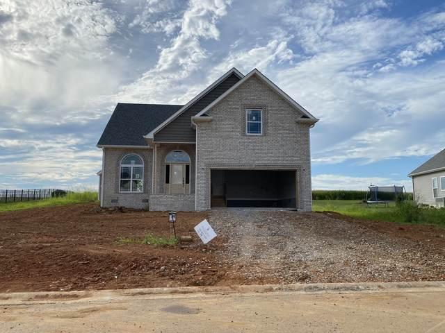 131 Josie Ln, Clarksville, TN 37043 (MLS #RTC2156511) :: Village Real Estate