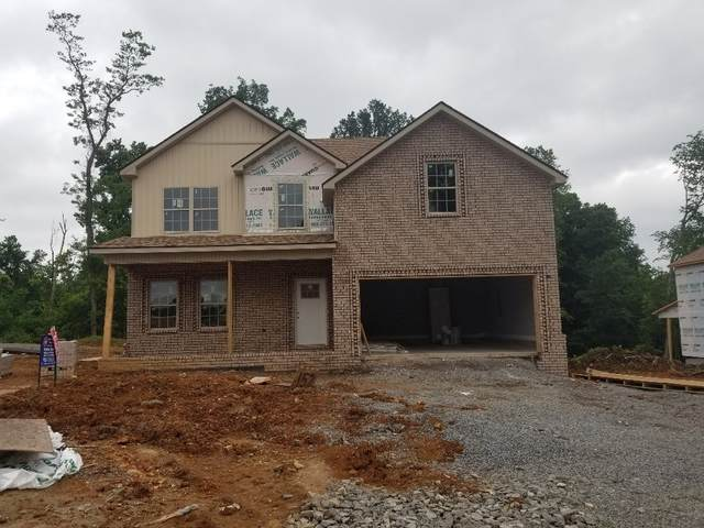 397 Kristie Michelle Ln, Clarksville, TN 37042 (MLS #RTC2233945) :: Candice M. Van Bibber | RE/MAX Fine Homes