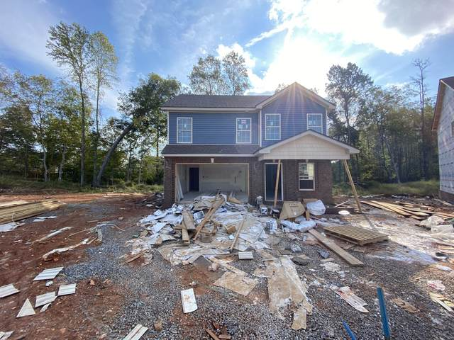 217 Cedar Springs 3, Clarksville, TN 37042 (MLS #RTC2284951) :: EXIT Realty Lake Country