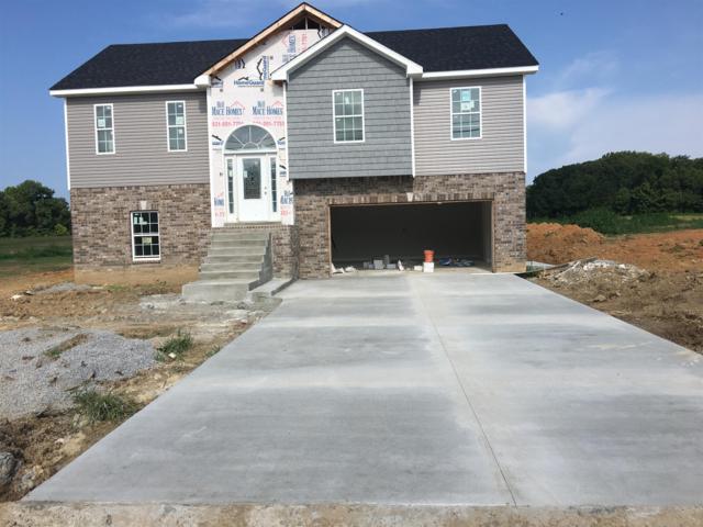 1471 Wilderness Way, Clarksville, TN 37042 (MLS #1869250) :: CityLiving Group