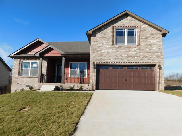 17 Hazelwood Court, Clarksville, TN 37042 (MLS #1965855) :: John Jones Real Estate LLC