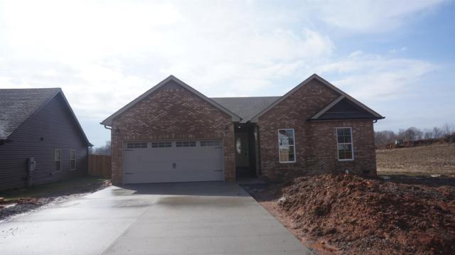 230 Autumn Creek, Clarksville, TN 37042 (MLS #1847740) :: DeSelms Real Estate