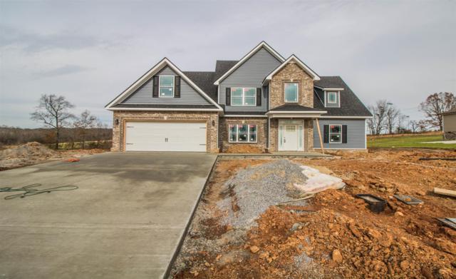 3 Rich Ellen Ridge, Palmyra, TN 37142 (MLS #1956278) :: John Jones Real Estate LLC