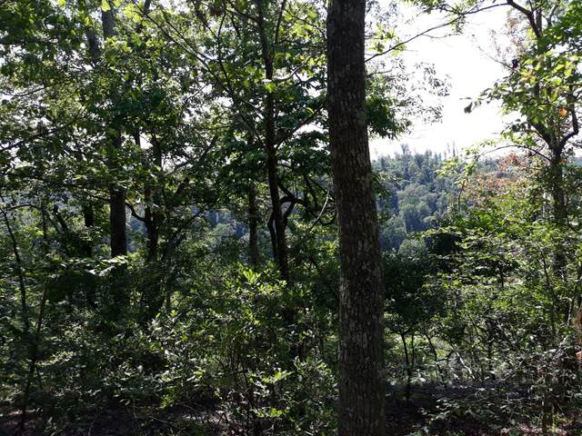 1918 Sams Creek Rd, Pegram, TN 37143 (MLS #RTC2189045) :: Christian Black Team