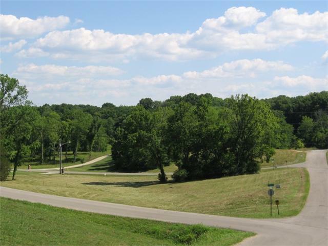 800 Joyce Ave, Lewisburg, TN 37091 (MLS #1340752) :: Nashville On The Move