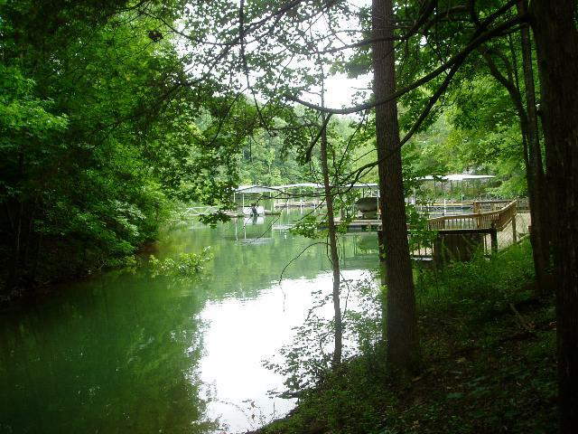 0 Leatherwood Dr Lot 9, Winchester, TN 37398 (MLS #1413448) :: REMAX Elite