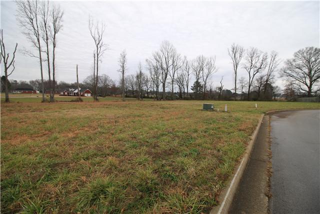 1 Amys Circle, Ardmore, AL 35739 (MLS #1597129) :: Nashville on the Move