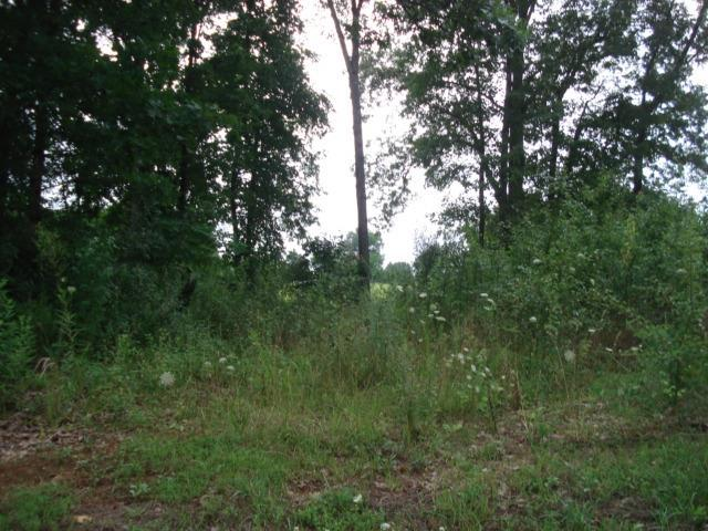 0 Beckridge Rd, McMinnville, TN 37110 (MLS #1648733) :: John Jones Real Estate LLC