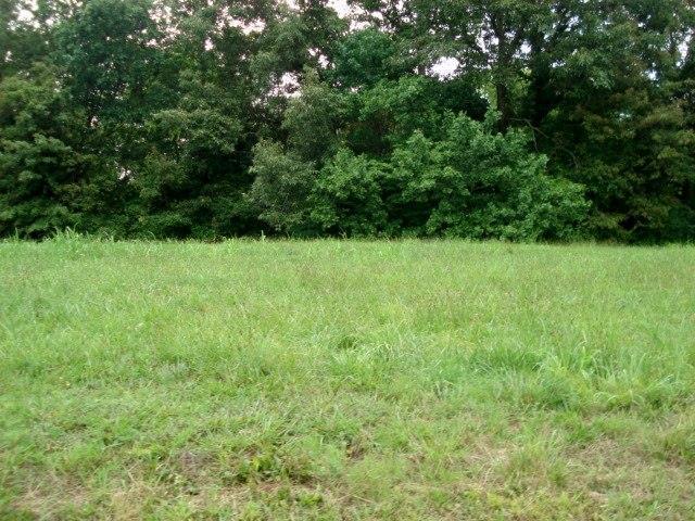 4 Woodland Creek Dr, McMinnville, TN 37110 (MLS #1648772) :: REMAX Elite