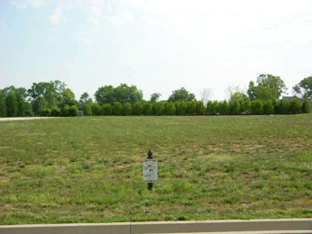 1624 Egret Way, Gallatin, TN 37066 (MLS #1648892) :: Berkshire Hathaway HomeServices Woodmont Realty