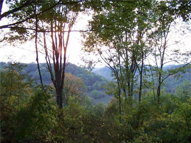 0 Davis Hollow Road, Dowelltown, TN 37059 (MLS #1736701) :: REMAX Elite