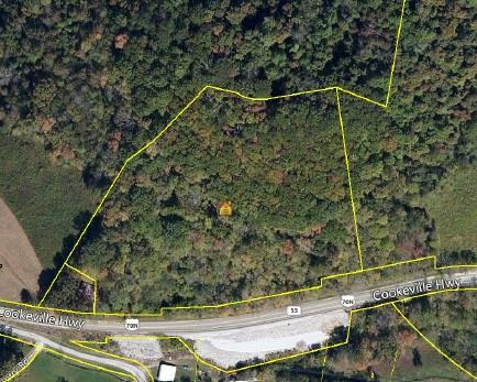0 Cookeville Hwy, Elmwood, TN 38560 (MLS #RTC1786660) :: Village Real Estate