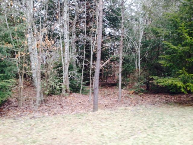 0 Savage Highland Dr, Coalmont, TN 37313 (MLS #1800966) :: NashvilleOnTheMove | Benchmark Realty