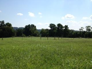3 Allisona Rd, Eagleville, TN 37060 (MLS #1818101) :: EXIT Realty Bob Lamb & Associates