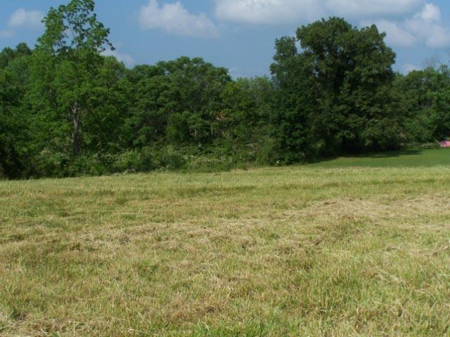 426 Hwy 70, West Broad, Smithville, TN 37166 (MLS #1832915) :: Team Wilson Real Estate Partners