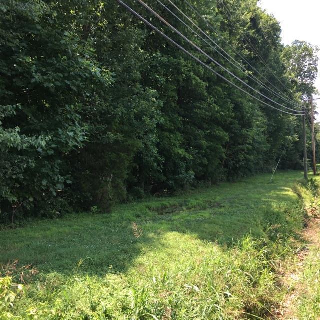 0 Dunbar Cave Rd, Clarksville, TN 37043 (MLS #1843480) :: CityLiving Group