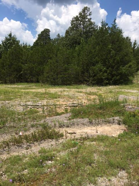 0 Hill Rd, Eagleville, TN 37060 (MLS #1843841) :: John Jones Real Estate LLC