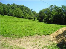 6 Buckeye Hollow Road, Smithville, TN 37166 (MLS #1845973) :: CityLiving Group
