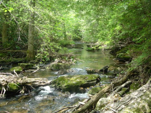 7 Rc Savage Highland Dr, Coalmont, TN 37313 (MLS #1848341) :: NashvilleOnTheMove | Benchmark Realty
