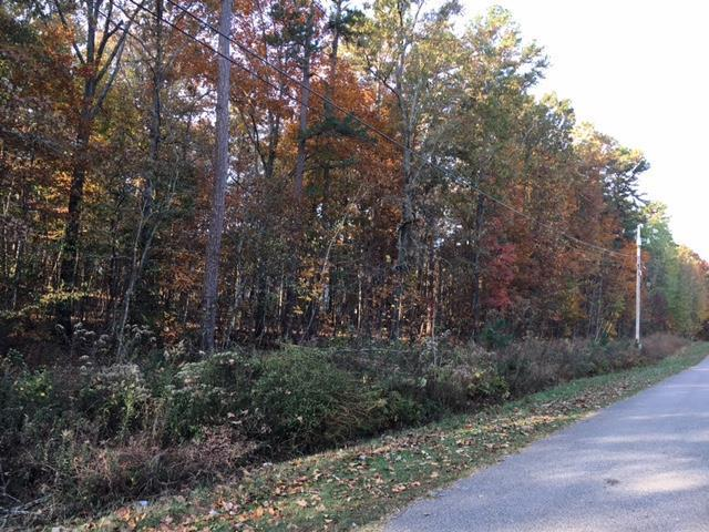 0 Hollow St, Hohenwald, TN 38462 (MLS #1849621) :: Keller Williams Realty