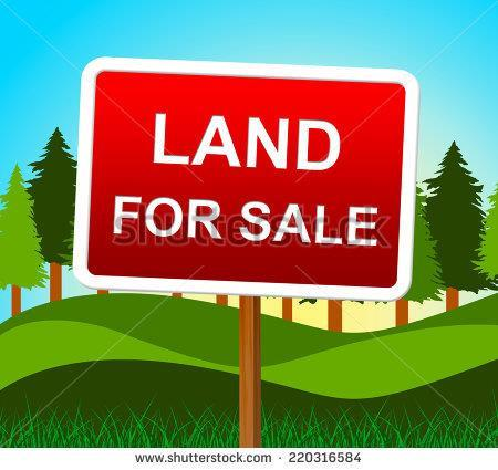 12345 Elk Ridge Rd, Cumberland City, TN 37050 (MLS #1855837) :: NashvilleOnTheMove | Benchmark Realty