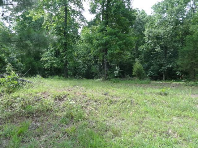 55 Backwoods Estates, Indian Mound, TN 37079 (MLS #1856216) :: CityLiving Group