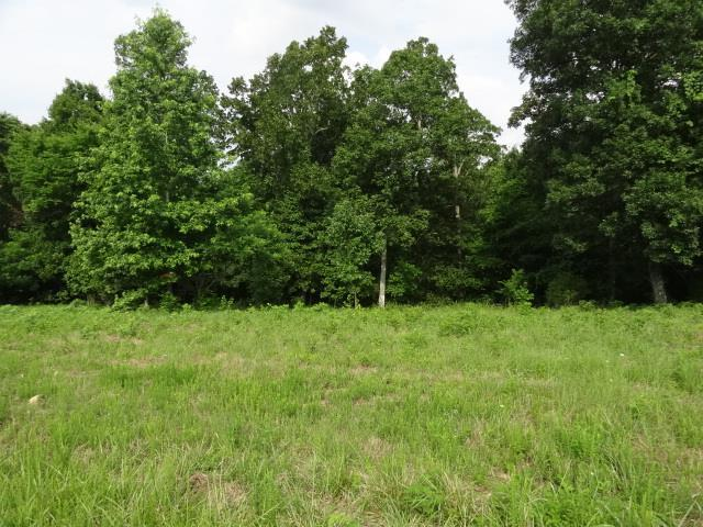 34 Backwood Estates, Indian Mound, TN 37079 (MLS #1856228) :: CityLiving Group