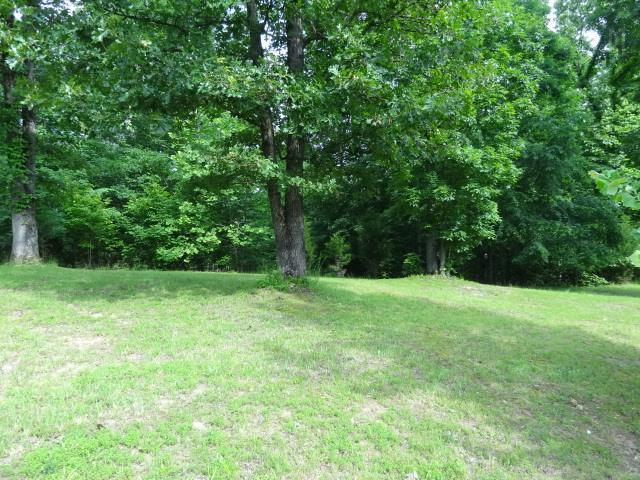 40 Backwoods Estates, Indian Mound, TN 37079 (MLS #1856233) :: CityLiving Group