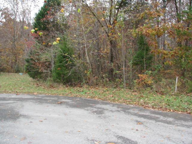 306 Twilight Ct, White Bluff, TN 37187 (MLS #1879829) :: CityLiving Group