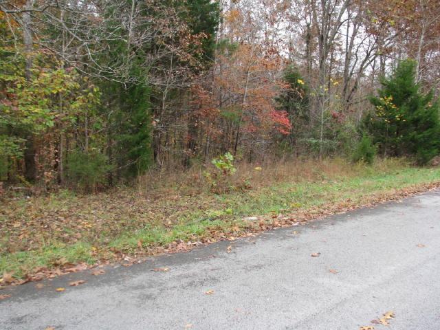 613 Evening Shade S, White Bluff, TN 37187 (MLS #1879838) :: CityLiving Group