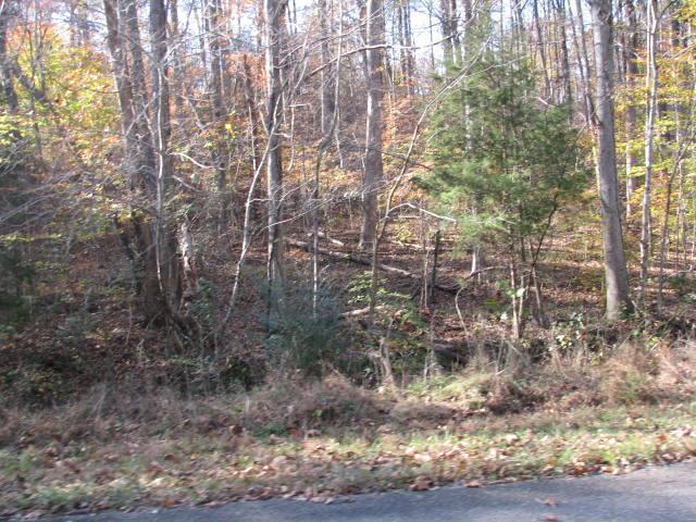 5 Dogwood Ct, Dickson, TN 37055 (MLS #1880001) :: NashvilleOnTheMove | Benchmark Realty