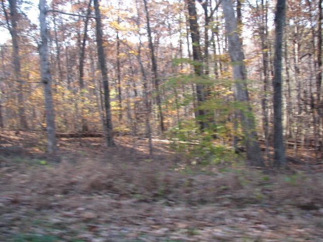 44 Scenic Dr, Dickson, TN 37055 (MLS #1880016) :: NashvilleOnTheMove | Benchmark Realty