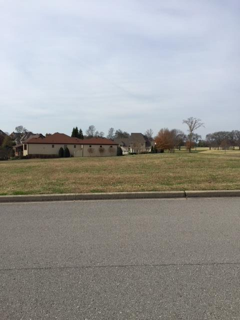 755 Plantation Way, Gallatin, TN 37066 (MLS #1880724) :: CityLiving Group
