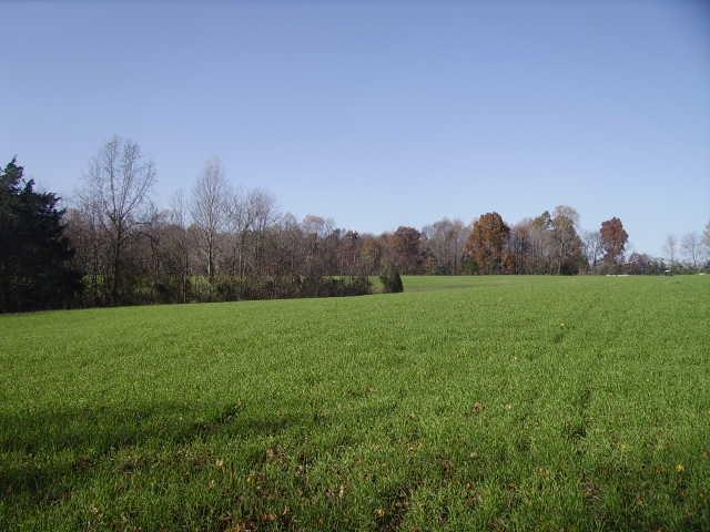 0 Hirestown Rd, Westmoreland, TN 37186 (MLS #1880736) :: Exit Realty Music City