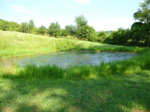 1595 Cortner Rd, Wartrace, TN 37183 (MLS #1882529) :: Maples Realty and Auction Co.