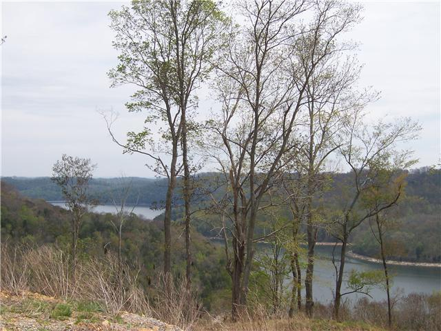 7 Shayna Ct, Smithville, TN 37166 (MLS #1883385) :: CityLiving Group